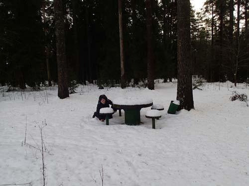 Hallén på picknick i skogen, men där finns väl inte någon cache....