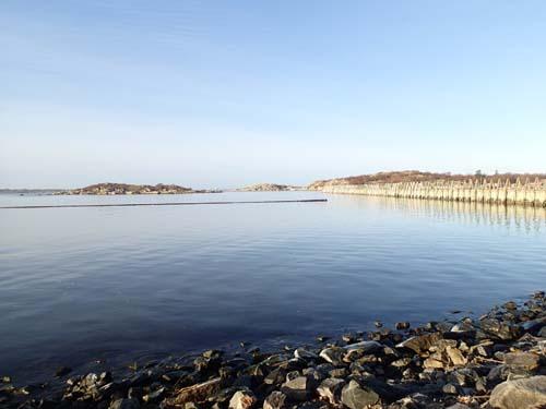 En avslutande bild på en kylslaget hav.