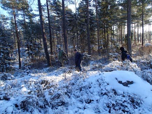 Skogscaching