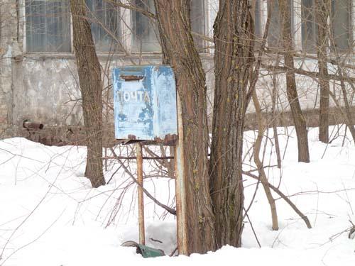 Träden har till och med tagit över brevlådorna.