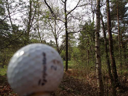 Nej, jag spelar inte golf!