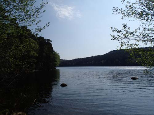 Stamsjön