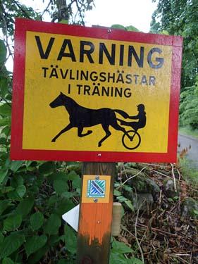 Hästvarning