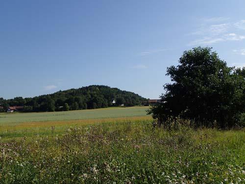 """""""Dödens berg"""" här låg Ale härads avrättningsplats."""