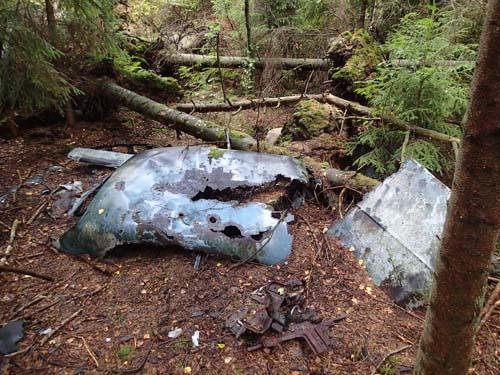 Dumpad bil i skogen