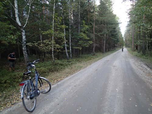 Cyklar utmed trailen.
