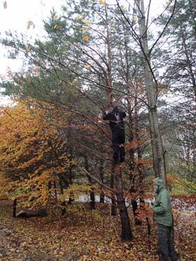 benholm78 räddade en av dagens första loggar genom en klättringsinsats.