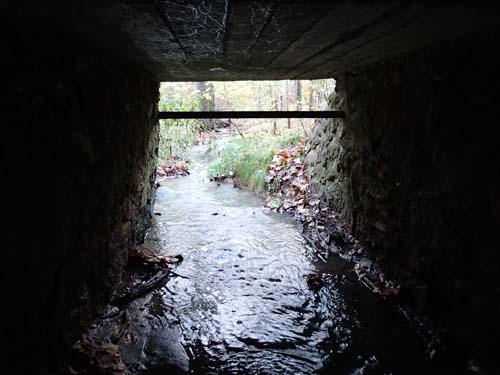 Här är Hallén trollet under bron!