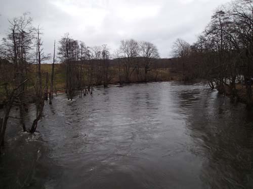 Från bron vid Kåhög ser man tydligt effekterna av de senaste veckornas regn.