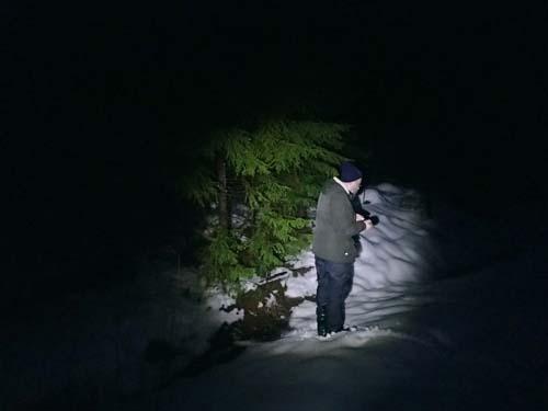 Träden fick kvällsbesök av Ingabo.