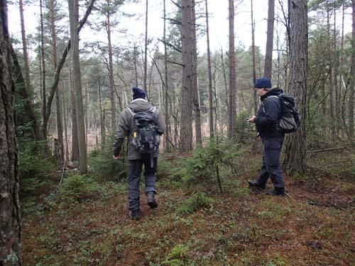 Ut i skogen vill jag gå...