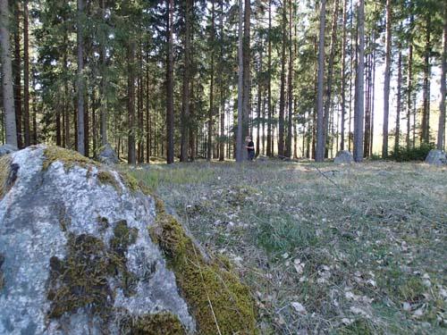 Steinsetning ved Rønneld Vestre med TMR68 i bakgrunden.