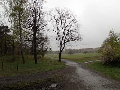 Detta är området kring Stockholms universitet, man kan ju tro att det är ute på landsbygden!