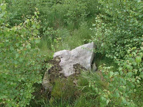Fin sten