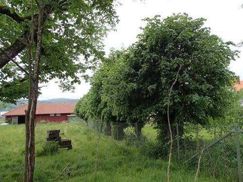 Här har gården legat på samma plats sedan 1600-talet.