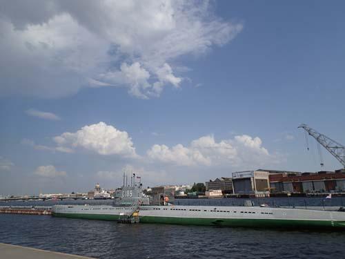 Titta är det inte en rysk ubåt? Nej, troligen en eller ett par minkar....