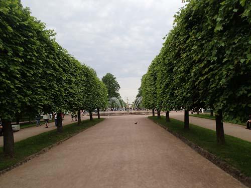 Peterhofs park