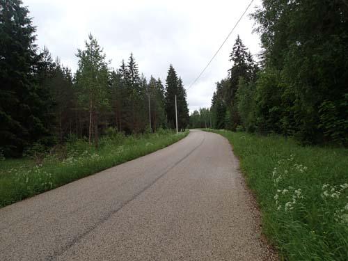 En ganska normal väg utmed trailen.