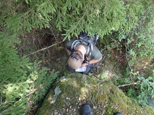 En av många loggar denna dag, sedd från ovan!