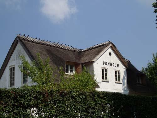 Danskt hus