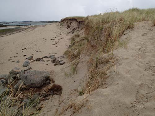 Undrar vems spår man ser i sanden?