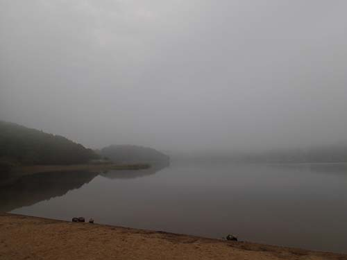 Dimman låg över Stensjön.