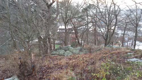 Mölndalsskog