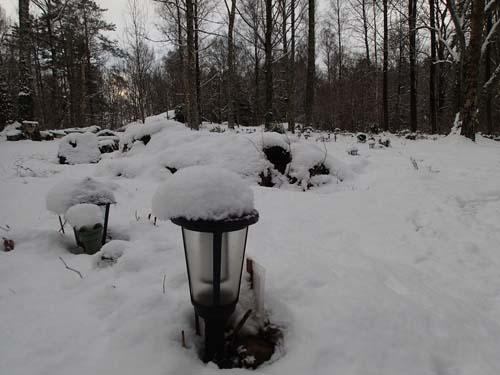 Djurkyrkogård