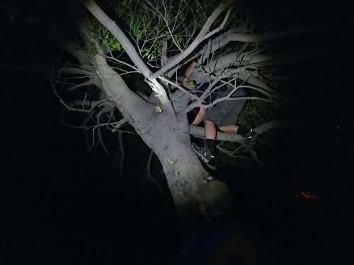Trädklättring var populärt men gav ingen utdelning.