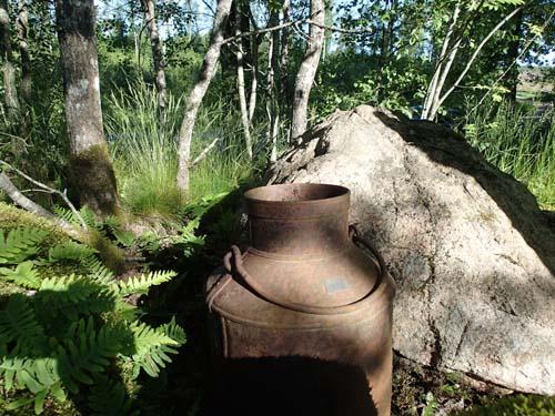 Här var mjölken slut, dock fanns resterna av ett övergivet getingbo i kannan.... samt en cache som inte var övergiven av sin loggbok.