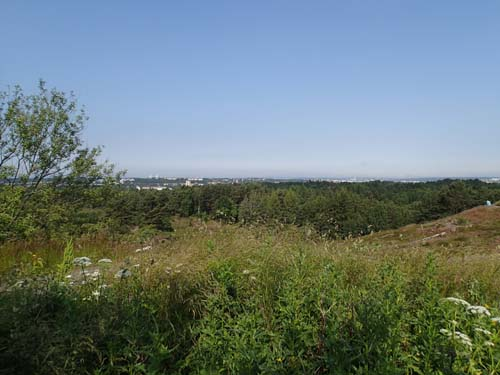 Utsikt från Änggårdsbergen