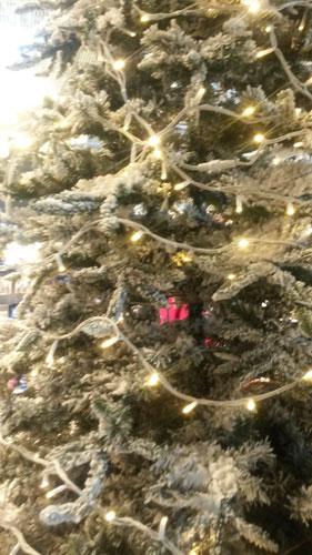 I Helsingfors firas julen i augusti....!!