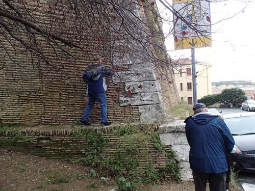 Torado är på väg att säkra sin och Ingabos första logg i Vatikanstaten.