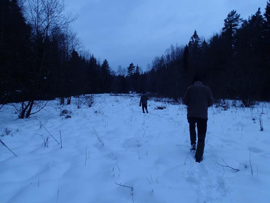 Snöigt landskap