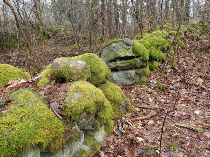 Några tycker stenar är mossigt, men mossiga stenar är ganska trevlig....
