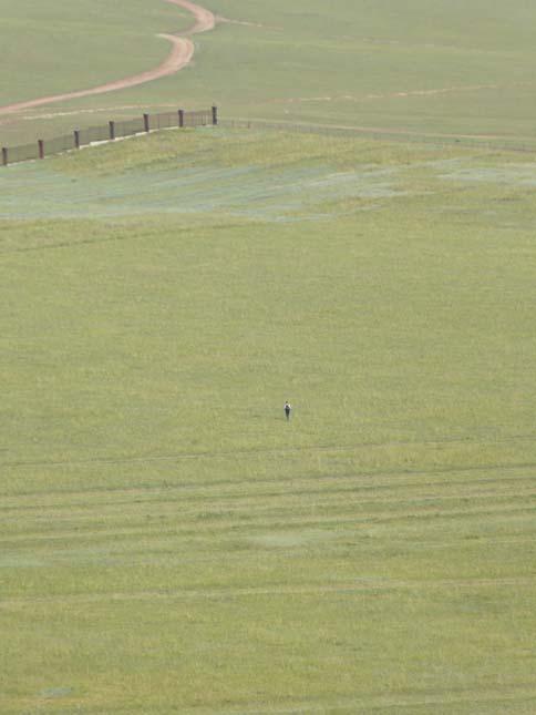 Ser du pricken - det är Hallén på väg mot en DNF. Foto: momelg.