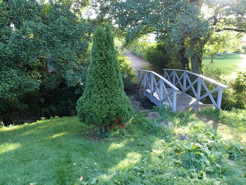 Buske och bro