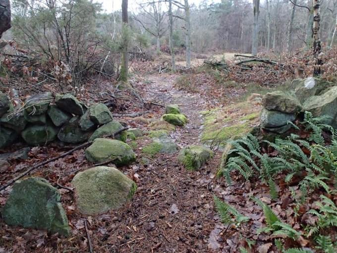 Detta är ett delvis igenvuxet kulturlandskap, med stenmurar och en del riktigt stora enbuskar, vilket är ett tecken på att här gått djur på bete.