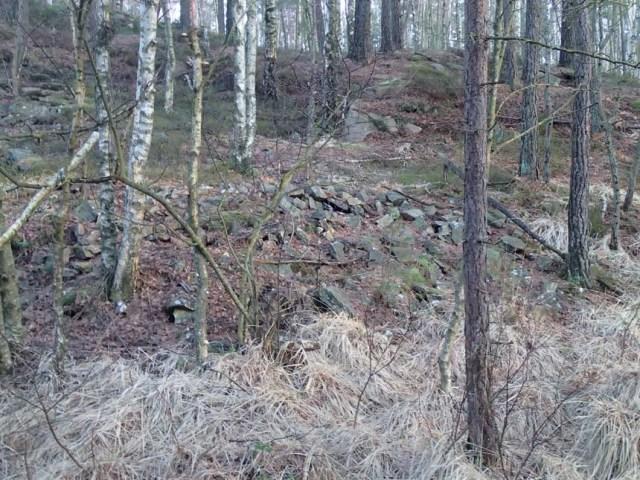 I skogen inte långt från cachen fanns dessa lämningar av stenhuggarnas verksamhet i området.