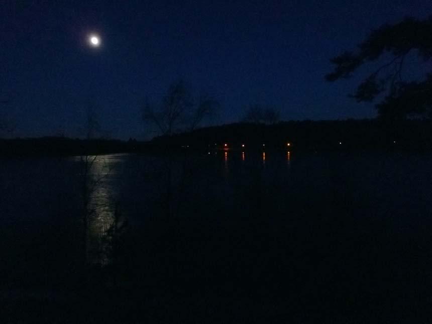 Härlanda tjärn i månsken.